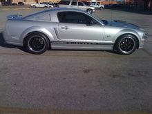 Mustang (2)