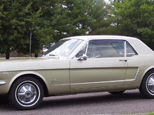 Original 1965 Honey Gold Coupe