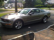 MD 2008 Stang