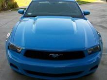 Mustang 0051