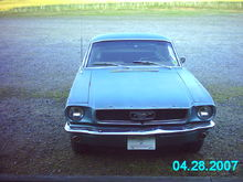 Mustang now 3
