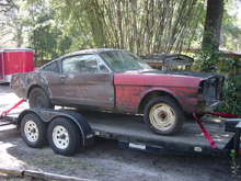 car on trailer3