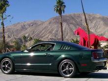 Plam Desert Mustangs a pair!