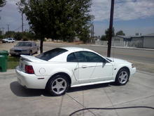 White 2000 gt mustang
