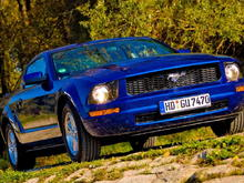 Mustang SS (Sabine's Stang) on 26 Oct 2008 with Vista Blue mirror covers.