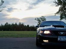 Garage - Dave's Mustang