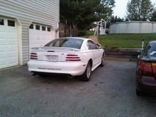 Mustang Back