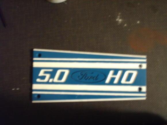 Mustang intake plaque (1)