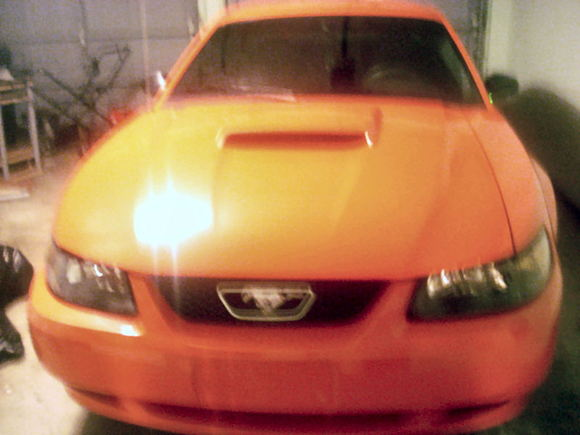 Angie's 2004 Anniversary Edition Ford Mustang GT