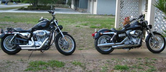 Both my Harleys. 883cc Sportster and 1584cc Dyna.