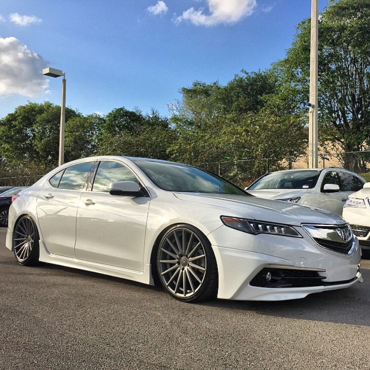 TLX In The Wild... And New Pics