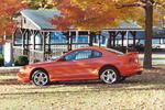 Tangerine Mustang