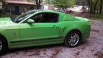 Garage - Gotta Have It Green