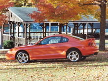 Stang in Grove