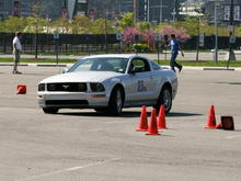 Mustang Autocross Action