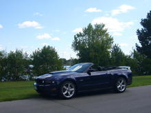 Mustang 20090831 (11)