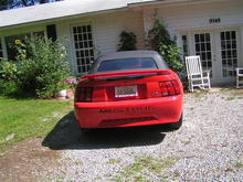 stang2 (Small)