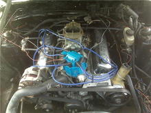 motor and trans