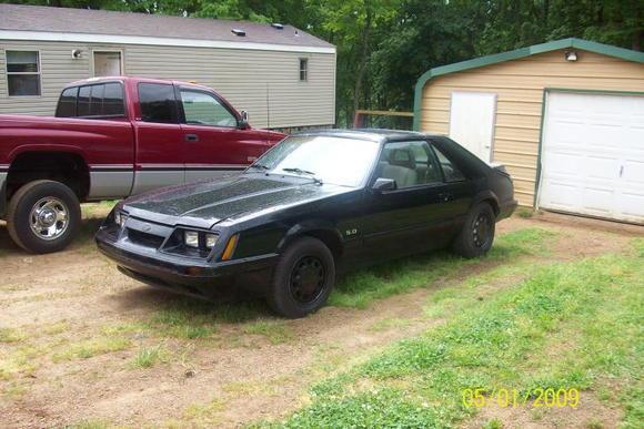 Mustang 3
