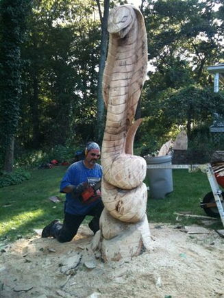12 Foot Cobra hand carved on my LAWN