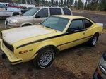 1977 American Motors Hornet