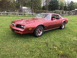 1977 Pontiac Firebird  for sale $12,000