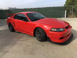 2000 Ford Mustang  for sale $45,900