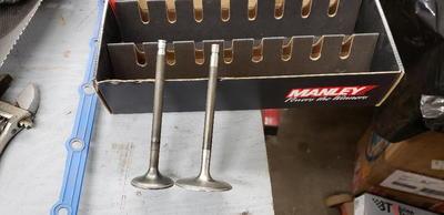 SBC Titanium valves