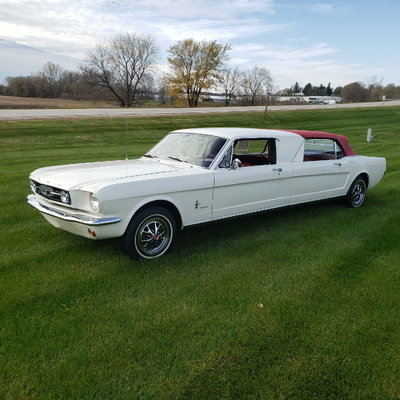 Mustang Convertible Limousine