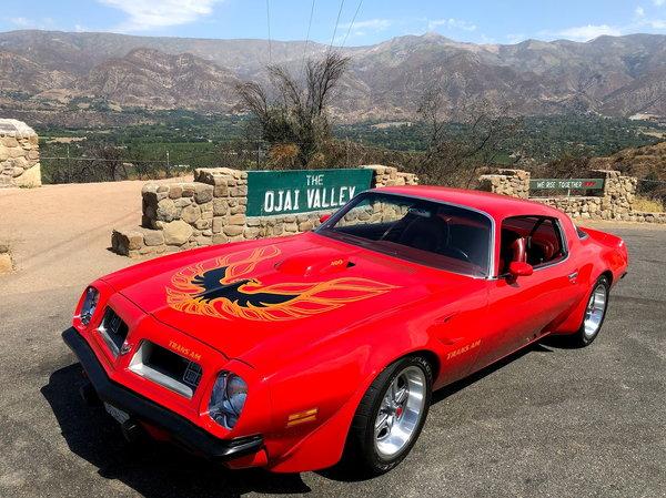 1975 Pontiac Firebird  for Sale $32,500