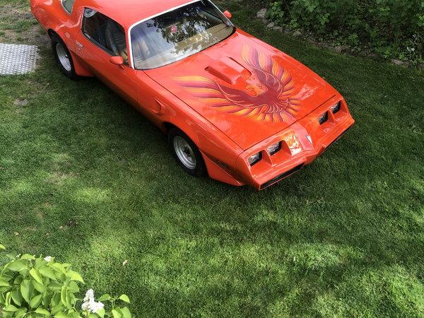1979 Pontiac Firebird  for Sale $16,000