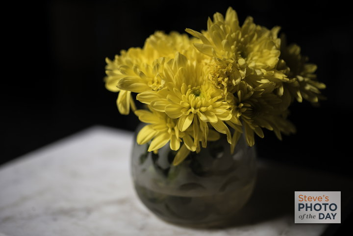 A Simple Vase of Mums