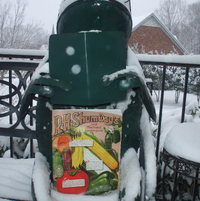Good day to peruse seed and garden catalog.