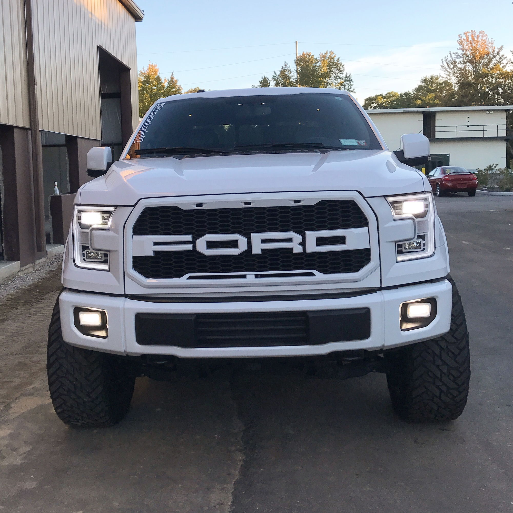 grill options raptor style grill page 129 ford f150 forum community of ford truck fans. Black Bedroom Furniture Sets. Home Design Ideas