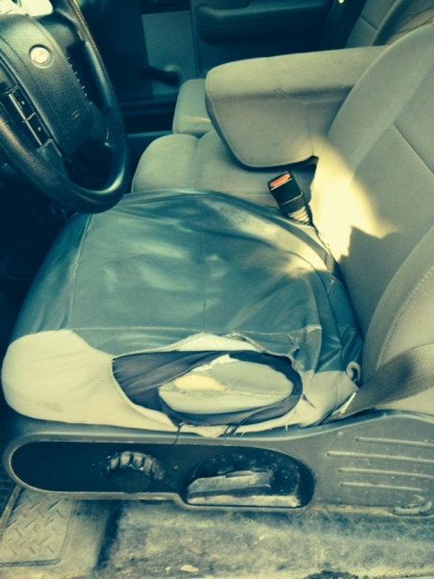 Miraculous Cabelas Low Back Trailgear Seat Covers Dailytribune Chair Design For Home Dailytribuneorg