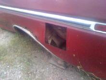 Cut out gas tank door