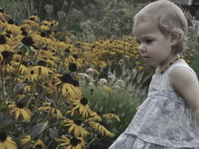 Untitled Album by Effervescence - 2011-08-30 00:00:00