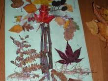 Untitled Album by Carwen*Angel - 2011-10-04 00:00:00