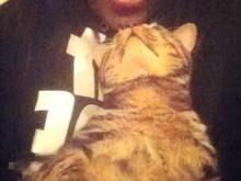 my fur baby patrick