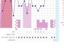 Chart from Kindara app