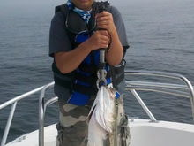 Cam with topwater 12lb striper