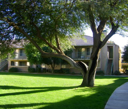 Reviews & Prices for Desert Oasis Apartments, Palm Desert, CA