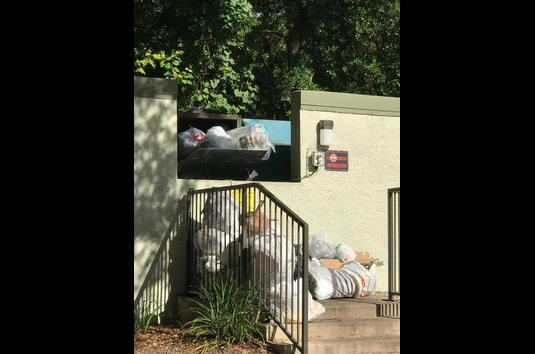 Reviews & Prices for Bellamay Grand, Gainesville, FL