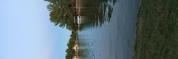 Lakeview at the Bay