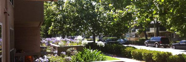 Redwood Plaza Apartments