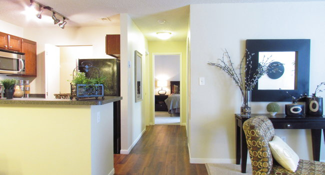 The Pavilions Apartment Homes 204 Reviews Manchester Ct