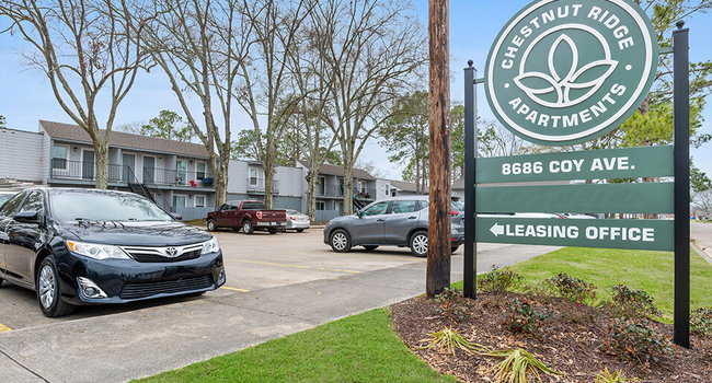 Welcome to Chestnut Ridge Apartments!