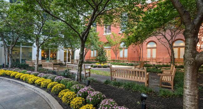 St James Apartments 35 Reviews Philadelphia Pa Apartments For