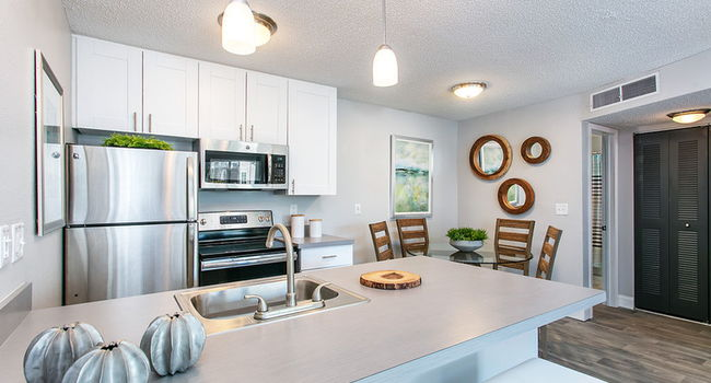 The Cove Apartment Homes - 126 Reviews | Tampa, FL ...