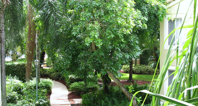 image of saint andrews of palm aire in pompano beach fl - Palm Aire Garden